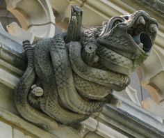 Washington National Cathedral Gargoyles: American Rattlesnake (9) in ...