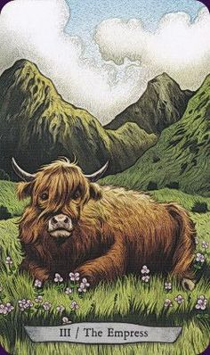 Animal-Totem-Tarot-2:The Animal Totem Tarot features animals from around the world in their natural  sometimes not so natural) habitats. Created by Eugene Smith, Leeza Robertson Tarot Deck - - Llewellyn 2016