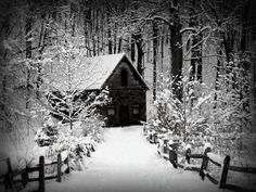 photos: the stone cottage in the woods Cottage In The Woods, Cabins In The Woods, Cozy Cottage, Winter Cabin, Winter Scenery, Cabins And Cottages, Stone Cottages, Snow Scenes, Winter Beauty