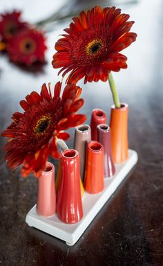 The colors of pumpkins and cranberries! A beautiful vase for almost any room or season. http://shop.pallensmith.com/home-decor/tubular-bud-vase-pumpkin/