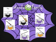 Spider-Web Instrument Family Matching Game