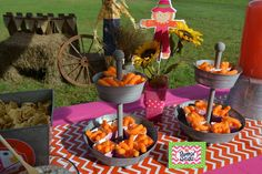 Amanda M's Birthday / Pumpkins / Fall / Birthday - Photo Gallery at Catch My Party 1st Birthday Photos, Birthday Fun, 1st Birthday Parties, Pink Pumpkins, Fall Pumpkins, Fall 1st Birthdays, Pumpkin Patch Birthday, Autumn Theme, Ava