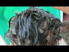 Çözüm Yok Demeyin Canlı Canlı Beyaz Saçları Yok Etme ! Gerçek - YouTube