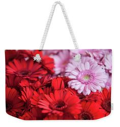 """Red And Pink Gerberas Display Weekender Tote Bag (24"""" x 16"""") by Jenny Rainbow.  The tote bag is machine washable and includes cotton rope handle for easy carrying on your shoulder.  All totes are available for worldwide shipping and include a money-back guarantee."""