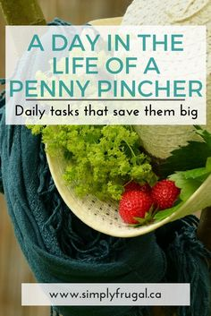 A Day in the Life of a Penny Pincher. Money Saving Tips.