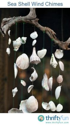 How to make a sea shell wind chimes! Use shells you've collected from your last mermaid advetnture. #finfun #mermaids #mermaidtail www.finfunmermaid.com