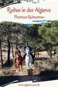 Reiturlaub in der Algarve: Das Pinetrees Reitzentrum bietet Reiturlaub und Reitausflüge durch den Naturpark Ria Formosa, Algarve, Portugal