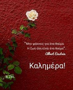 Good Morning Good Night, Albert Einstein, Crafts, Diy, Manualidades, Bricolage, Do It Yourself, Handmade Crafts, Craft