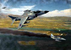 British Sea Harrier downing an Argentinian Super Etendard