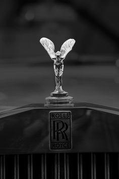Spirit Of Ecstasy Rolls Royce Logo, Rolls Royce Cars, Top Luxury Cars, Luxury Suv, Rolce Royce, Voiture Rolls Royce, Rolls Royce Wallpaper, Mercedes Logo, Car Iphone Wallpaper