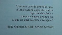 João Guimarães Rosa, Sertão Veredas