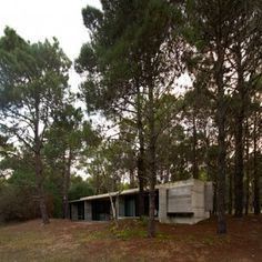 Concrete cabin by Luciano Kruk Arquitectos  built in an Argentinian woodland