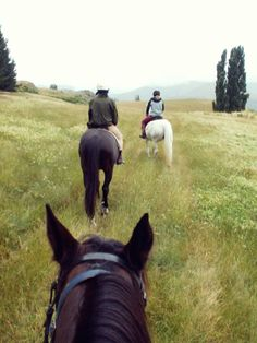 Horse Trekking in the Lakes Districts, Queenstown, New Zealand Romantic Escapes, New Zealand Travel, South Island, Small Island, Lake District, Horse Riding, Dream Vacations, Timeline, Trekking