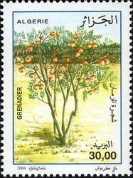 Country / PostAlgeria Date of Issue25 October 2006 Primary themeFlora (Trees)  SubjectNational Tree Day - Pomegranate (Punica granatum)