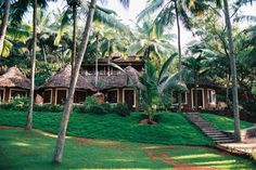 Kerala village in south west India - Home of our 10 day Ayurvedic Rejuvenation Retreat for Couples & Individuals.