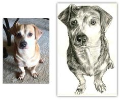 """Custom Dog Portraits: Get a great Gift for any man, an awesome portrait of his """"best"""" friend"""