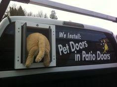 Dog Door Sliding Glass Door e1369982292154 An Exam The Brownish Pet Door