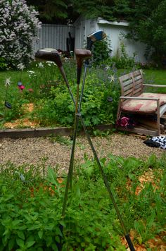 Found these vintage golf clubs at the local thrift.  Wired them to form a tripod and plunked into the garden in the same day.  Hope people look at it rather than the weeds they're standing over!