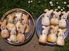 Emmerelles Quarkhasen, ein schmackhaftes Rezept mit Bild aus der Kategorie Kekse & Plätzchen. 593 Bewertungen: Ø 4,5. Tags: Backen, Frühling, Frühstück, Geheimrezept, Kekse, Kinder, Ostern