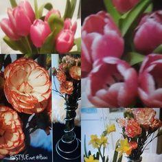 KOTI&SISUSTUS. KEVÄT TALVI&KUKAT...💓📷☺Nyt on Tulppaanien aika, myös Neilikat ovat kauniita ja kestäviä Kukkia, Koti&Siustukseen. Kuva 2017 Kukat. Tykkään KUKISTA, SUOSITTELEN. #sisustusblogi #sisustus #koti #kevättalvi #kukat #tulppaanit #neilikat #kotimaiset #suomi #talvi #kevät #suosittelen