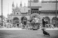 Piazza San Marco Venice Italy