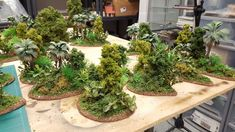 great looking jungle set Warhammer Terrain, 40k Terrain, Game Terrain, Wargaming Terrain, Miniature Bases, Sci Fi Miniatures, Model Training, D&d Dungeons And Dragons, Space Wolves