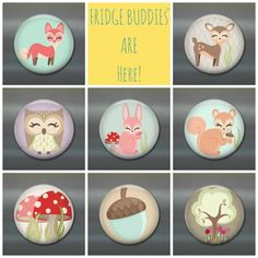 Woodland creatures magnet set.