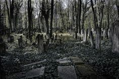 Jüdischer Friedhof Berlin, Prenzl`berg
