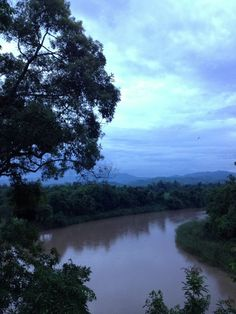 A gorgeous view from Four Seasons Tented Camp Golden Triangle, Thailand. Do you think this is taking at dusk or dawn?