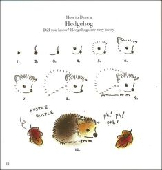 How to draw a living pincushion. One of my favorite animals, and favorite squishes!  #squishable #cutengeeky