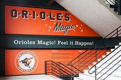 Ashton Design · Orioles · Camden Yards · Environmental Graphics / Stadiums