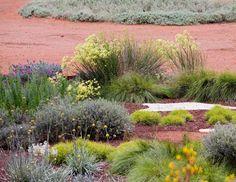 The Australian Garden / Taylor Cullity Lethlean / Paul Thompson.