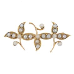 An early 20th century gold, seed and split pearl brooch. Designed as a foliate line. Length 3.8cms. Weight 3.5gms.