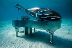 Imagine diving into the Cancun Underwater Museum of Art which contains over 500 underwater statues including a piano sculpture. Underwater Sculpture, Underwater Art, Underwater Photography, Art Photography, Underwater Images, Sea Sculpture, Editorial Photography, Jason Decaires Taylor, Oh The Places You'll Go