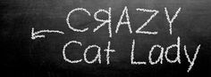 Facebook Timeline Cover Crazy Cat Lady by carolyngallo on Etsy, $1.20