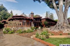 Awesome house in Pasadena.....love the HUGE tree in the front yard!