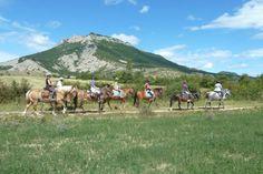 """C'est au départ du centre des Eysserennes à Savournon que s'organise une """"Randonnée équestre au naturel"""". Provence, Centre, Horses, Travel, Animals, Roots, Mountains, Animales, Viajes"""