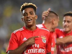the new promise of Benfica football and the Portuguese national team Soccer, Football, Sports, Twitter, Portuguese, Motor, Jr, Portugal, Champions League