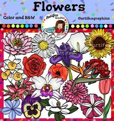 Flowers clip art. Color and B&WThis set is available to purchase as part of the   Gardening clip art BundleFlowers clip art set features 36 items: 18 clip arts in color.18 clip arts in black & white.Blue PlumbagoCalla LilyCarnationDahliaDaisyFlower of ParadiseIrisLilyLotusMagnoliaNarcissusOrchidPansyPetuniaPoppyRoseSunflowerTulipAll images are 300 dpi, Png files.This clipart license allows for personal, educational, and commercial small business use.