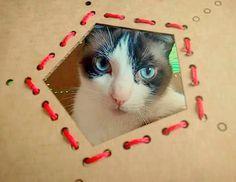 El #gato Johny posa satisfecho ante los paparazzis que admiran su hogar icosaédrico fabricado mediante un diseño de #cartón #cosido y #cortelaser.  #lasercut #geometric #volume #geometry #lasercutting #cats #laser #cardboard #sewed #sewing #red #wire by appart810