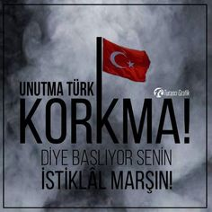 Turkey Flag, Ridiculous Pictures, Turkish Army, Life Words, Dark Fantasy Art, Istanbul Turkey, Minis, History, Photography
