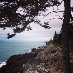 Instagrammer Brittany Waycott embraces all New River Beach Provincial Park has to offer: hiking, biking, trails & all with a picturesque ocean view. An #NBParks must!