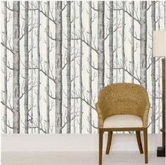 Silver birch wallpaper from Cole and Sons