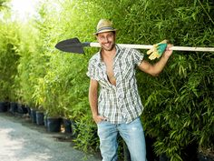 Do It Yourself or Hire the Professionals: Tackling Garden Conundrums