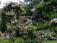 Gartengestaltung rosenbogen aus metallkonstruktion for Gartengestaltung rosenbogen