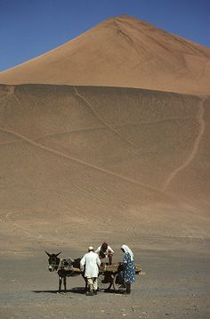 Somewhere in the Taklimakan desert, Xinjiang province, North-West China.