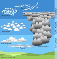 types of clouds - Google Search