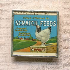 Chicken Feed Vintage Ad Magnet by XOHandworks