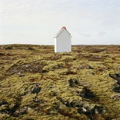 Scarlett Hooft Graafland's Surreal Appearance of Nature — THE TWO COLLECTIVE