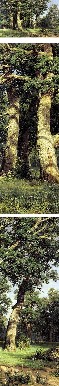 Oak Grove, Ivan Shishkin. I don't really want to paint like this, but Shishkin is an amazing painter of trees.